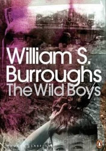 Okładka książki The wild boys.. A book of the dead.