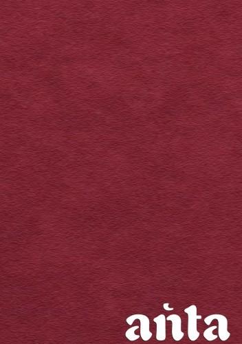 Okładka książki Ańta