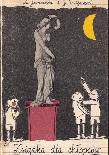 Okładka książki Książka dla chłopców