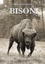 Okładka książki Bison