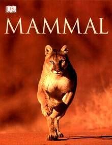 Okładka książki Mammal