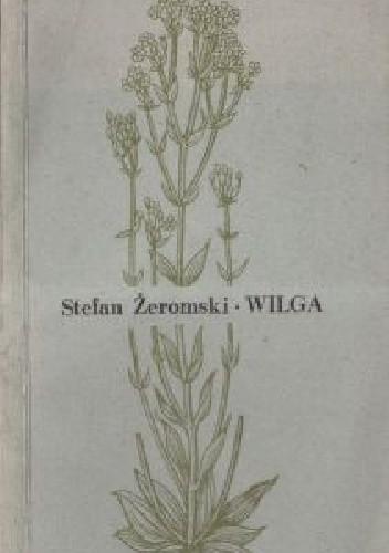 Okładka książki Wilga