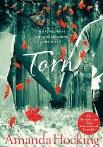 Okładka książki Torn