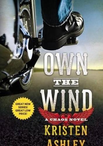 Okładka książki Own the Wind