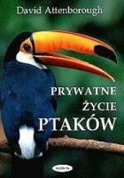 Prywatne życie ptaków