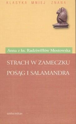 Okładka książki Strach w Zameczku. Posąg i salamandra