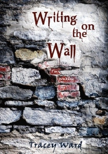 Okładka książki Writing on the Wall