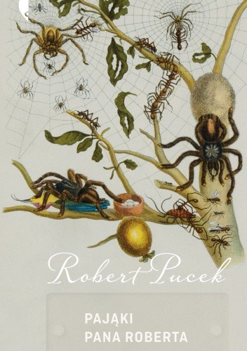 Okładka książki Pająki pana Roberta
