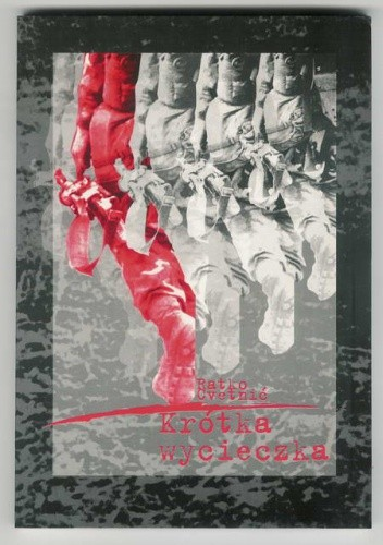 Okładka książki Krótka wycieczka: zapisy wojenne z lat 1992 - 1993