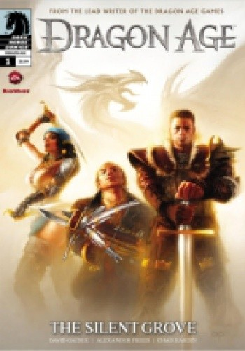 Okładka książki Dragon Age: The Silent Grove vol. 1