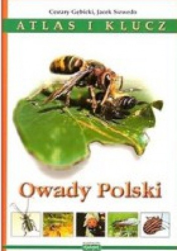 Okładka książki Owady Polski