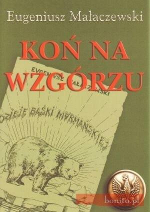 Okładka książki Koń na wzgórzu