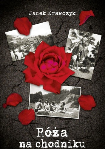 Okładka książki Róża na chodniku
