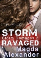 Storm Ravaged