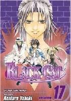 Black Cat. Vol. 17.