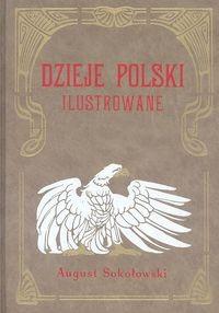 Okładka książki Dzieje Polski Ilustrowane t.4