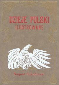 Okładka książki Dzieje Polski Ilustrowane t.6