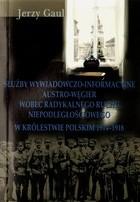 Okładka książki Służby wywiadowczo-informacyjne Austro-Węgier wobec radykalnego ruchu niepodległościowego w Królestwie Polskim 1914-1918