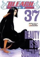 Bleach 37.  Beauty is so Solitary