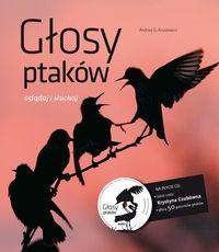 Okładka książki Głosy ptaków