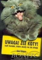 Uwaga! Złe koty! czyli kociaki, które zeszły na złą drogę