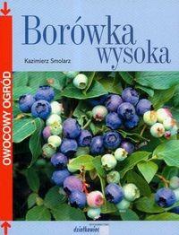 Okładka książki Borówka wysoka