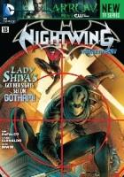 Nightwing. The Hunter