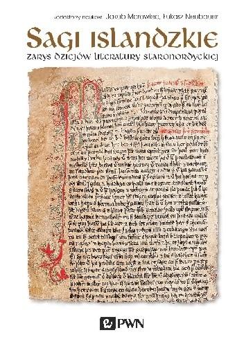 Okładka książki Sagi islandzkie. Zarys dziejów literatury staronordyckiej
