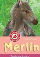 Merlin. Bezdomny źrebak
