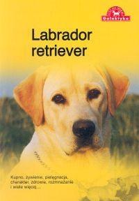 Okładka książki Labrador retriever