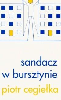 Okładka książki Sandacz w bursztynie