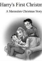 Harry's first christmas. A Marauders christmas story
