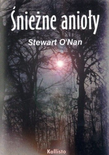 Okładka książki Śnieżne Anioły