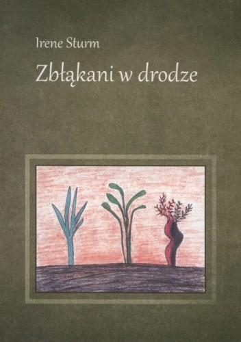 Okładka książki Zbłąkani w drodze
