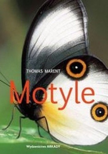 Okładka książki Motyle