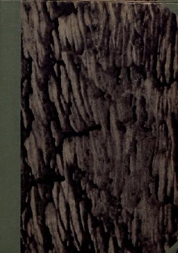Okładka książki Wiatraki Don Chichota: pamiętnik-scenarjusz