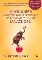 Mindfulness: Jak wytrenować dzikiego słonia i inne przygody w praktyce uważności
