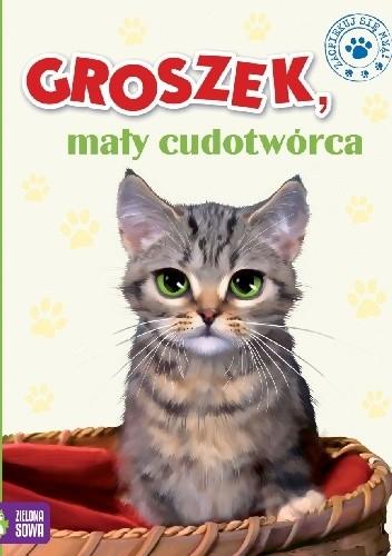 Okładka książki Groszek, mały cudotwórca