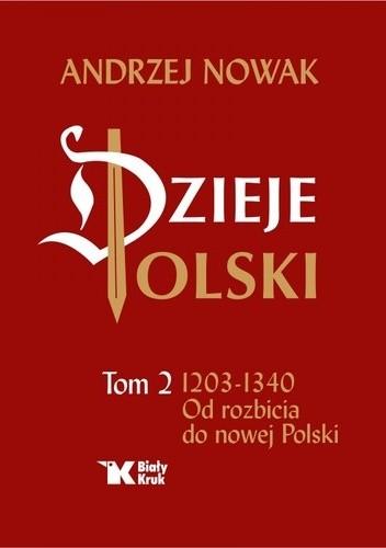 Okładka książki Dzieje Polski Od rozbicia do nowej Polski Tom 2