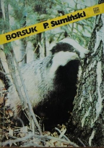 Okładka książki Borsuk