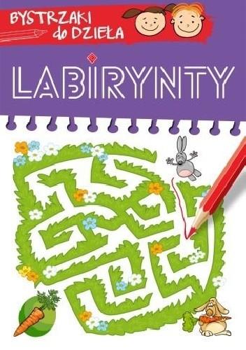 Okładka książki Labirynty. Bystrzaki do dzieła