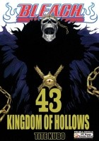 Bleach 43. Kingdom of hollows