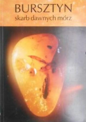 Okładka książki Bursztyn skarb dawnych mórz
