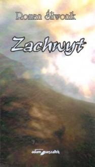 Okładka książki Zachwyt