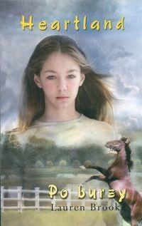 Okładka książki Po burzy
