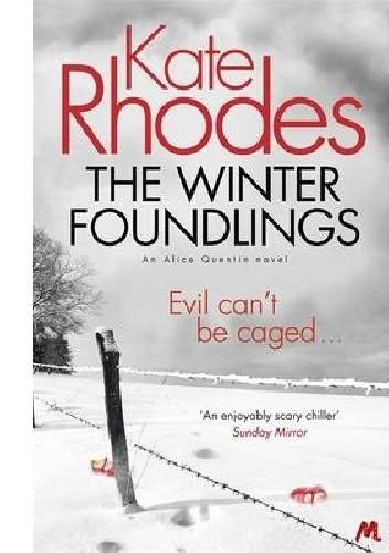 Okładka książki The Winter Foundlings