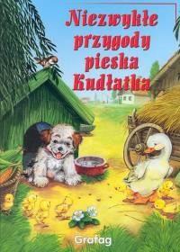 Okładka książki Niezwykłe przygody pieska Kudłatka