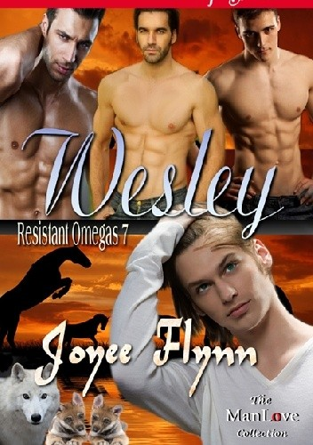 Okładka książki Wesley