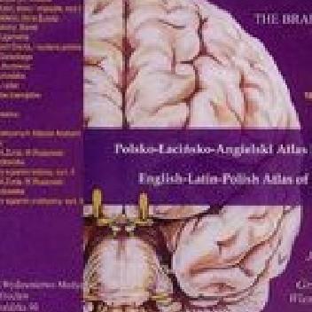 Okładka książki Ośrodkowy i obwodowy układ nerwowy