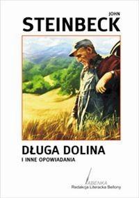 Okładka książki Długa dolina